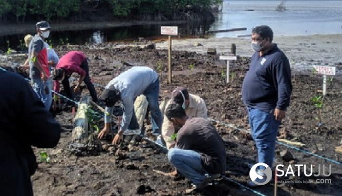 LHKProvinsi Riau Mensosialisasikan Program Adopsi Pohon dan Berikan 2000 Bibit Mangrove